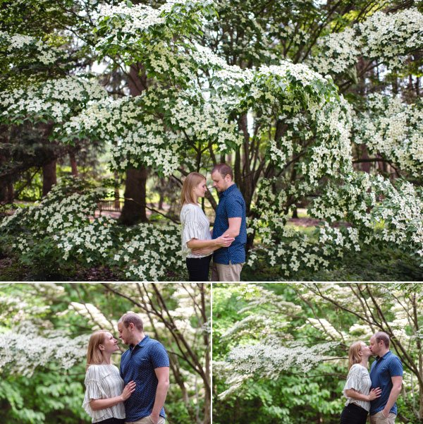 a couple standing by a tree in full bloom