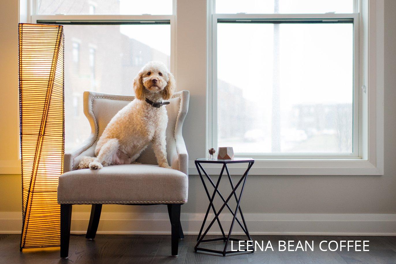 leena bean coffee